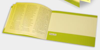 folder brochure (bottom)